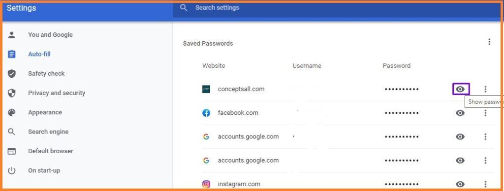 Show password Options on Google Chrome