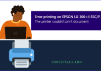 The Printer couldn't print this document error printing on Epson